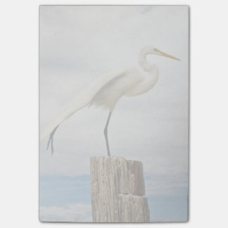 Talented Egret | Fort Myers Beach, Florida Post-it® Notes