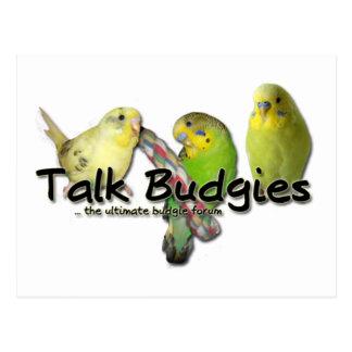 Talk Budgies v3 Postcard