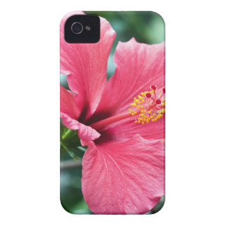 TALK HIBISCUS FLOWER iPhone 4 Case-Mate CASE