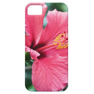 TALK HIBISCUS FLOWER iPhone 5 CASES