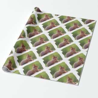 TALK SQUIRREL - Photography Jean Louis Glineur Wrapping Paper