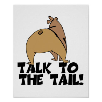 Talk to the Tail Bear Poster