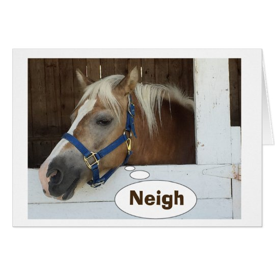 TALKING HORSE SAY NEIGH-YOU ARE HOW OLD? CARD