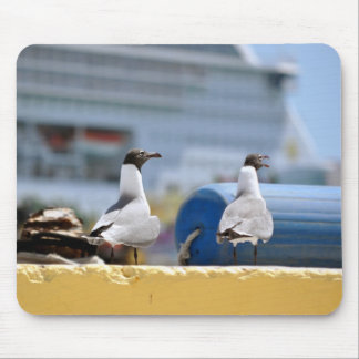 Talking Seagulls Mouse Pad