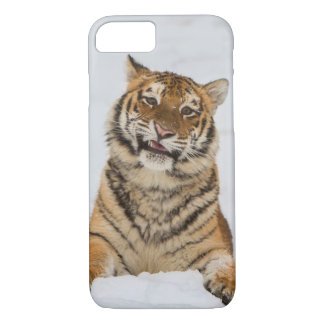 Talking Tiger Case