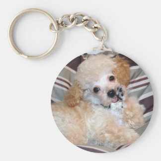 Talking Toy Poodle Puppy Basic Round Button Key Ring