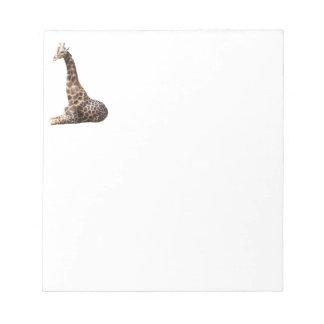 Tall Cute Giraffe Real Animal Photo Notepads