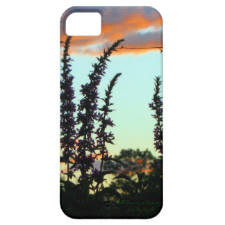 Tall Grasses at Sunset iPhone 5 Covers