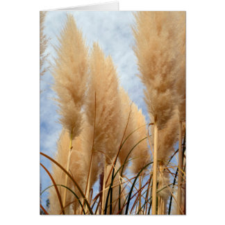 Tall Grasses Blank Greeting Card