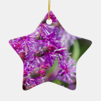 Tall Ironweed Wildflowers Ceramic Ornament
