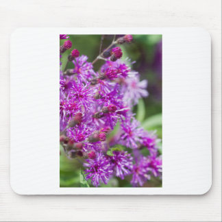 Tall Ironweed Wildflowers Mouse Pad