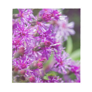 Tall Ironweed Wildflowers Notepad