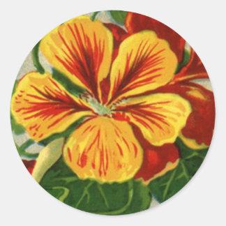 tall nasturtium round sticker