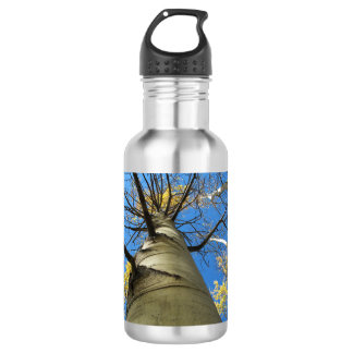 Tall Quaking Aspen Tree 532 Ml Water Bottle