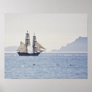 Tall ship Lady Washington poster