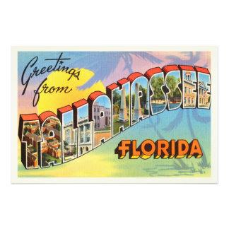 Tallahassee Florida FL Old Vintage Travel Souvenir Photo Print
