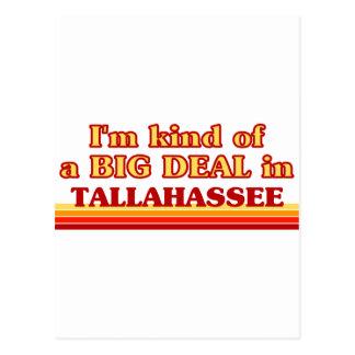 TALLAHASSEEaI am kind of a BIG DEAL in Tallahassee Postcard