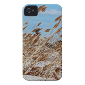 Tame a Wild Wind-horizontal iPhone 4 Case-Mate Cases
