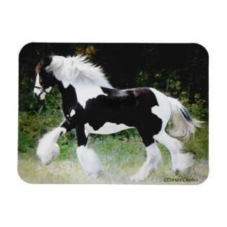 """Tamlin"" Horse Photo Magnet"