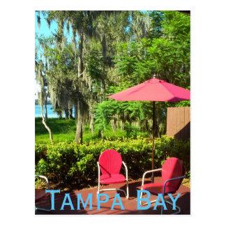 Tampa Bay Florida Postcard