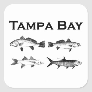 Tampa Bay Saltwater Fishing Square Sticker