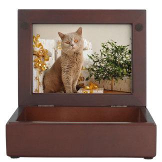 Tan Cat Keepsake Box