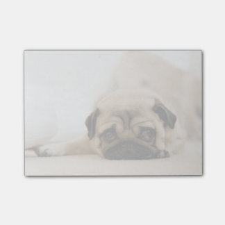 Tan Female Pug Post-it® Notes