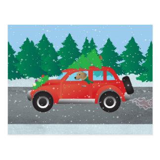 Tan Plott Hound Driving Christmas Car Postcard