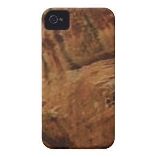 tan vertical sandstone lines Case-Mate iPhone 4 case
