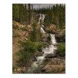 Tangle Falls Postcard