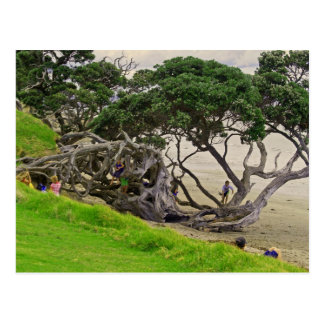 Tangle tree postcard