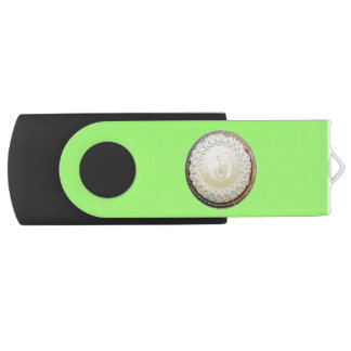 Tangy Key Lime Pie Fun Swivel USB 2.0 Flash Drive