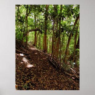 Tantalus Hiking Trail Print