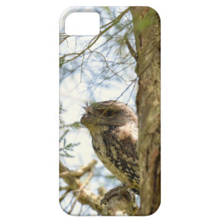 TANY FROGMOUTH QUEENSLAND AUSTRALIA iPhone 5 COVERS