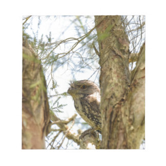 TANY FROGMOUTH QUEENSLAND AUSTRALIA NOTEPAD