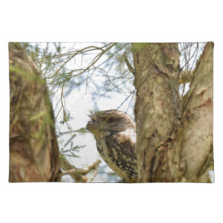 TANY FROGMOUTH QUEENSLAND AUSTRALIA PLACEMAT