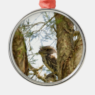 TANY FROGMOUTH QUEENSLAND AUSTRALIA Silver-Colored ROUND DECORATION