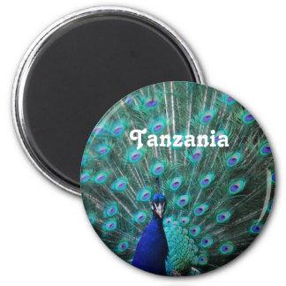 Tanzania Peacock 6 Cm Round Magnet