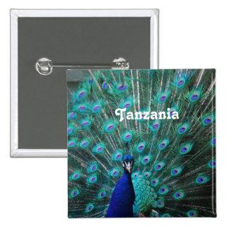 Tanzania Peacock Pinback Button