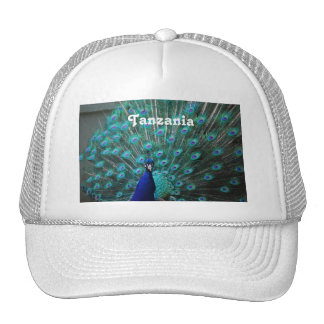 Tanzania Peacock Trucker Hat