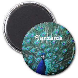 Tanzania Peacock Refrigerator Magnets