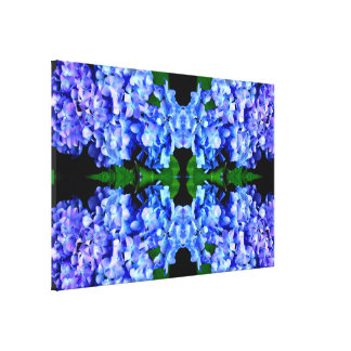 Tanzanite  Hydrangeas Canvas Print