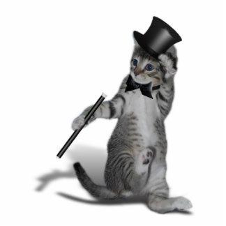 Tap Dancing Cat Standing Photo Sculpture