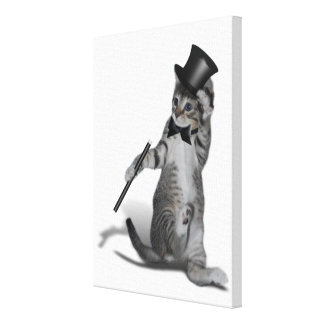 Tap Dancing Kitten Stretched Canvas Print