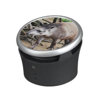 Tapir 1115P Speaker
