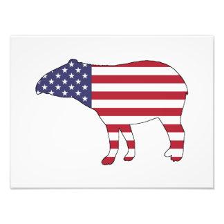 """Tapir """"American Flag"""" Photo"""