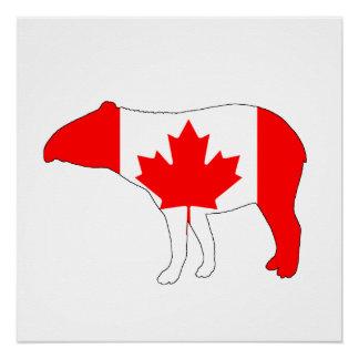 Tapir Canada