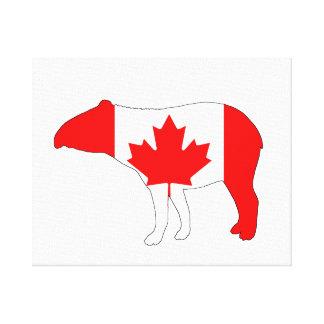 Tapir Canada Canvas Print