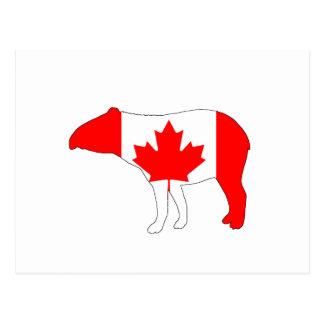 Tapir Canada Postcard