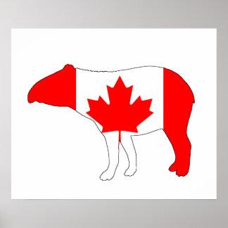 Tapir Canada Poster